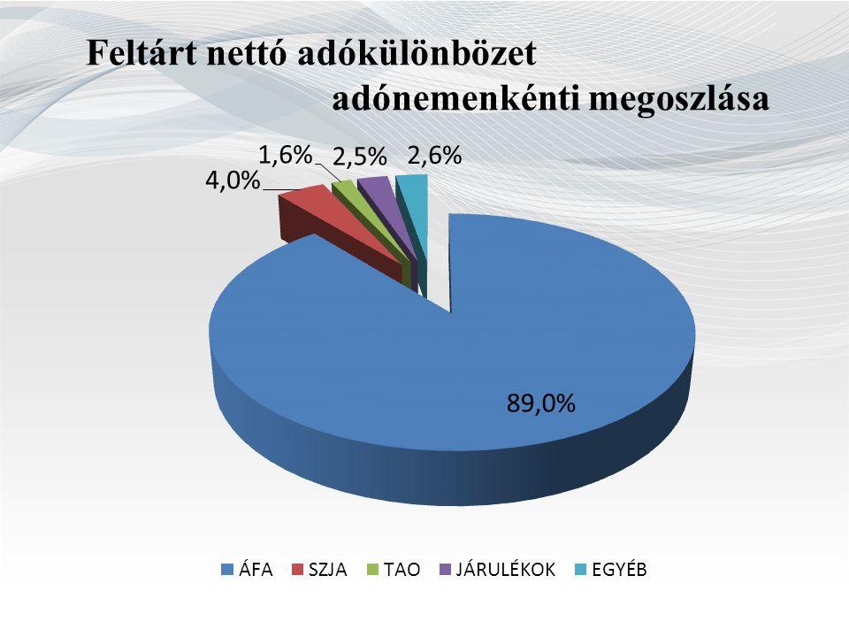 Feltárt nettó adókülönbözet