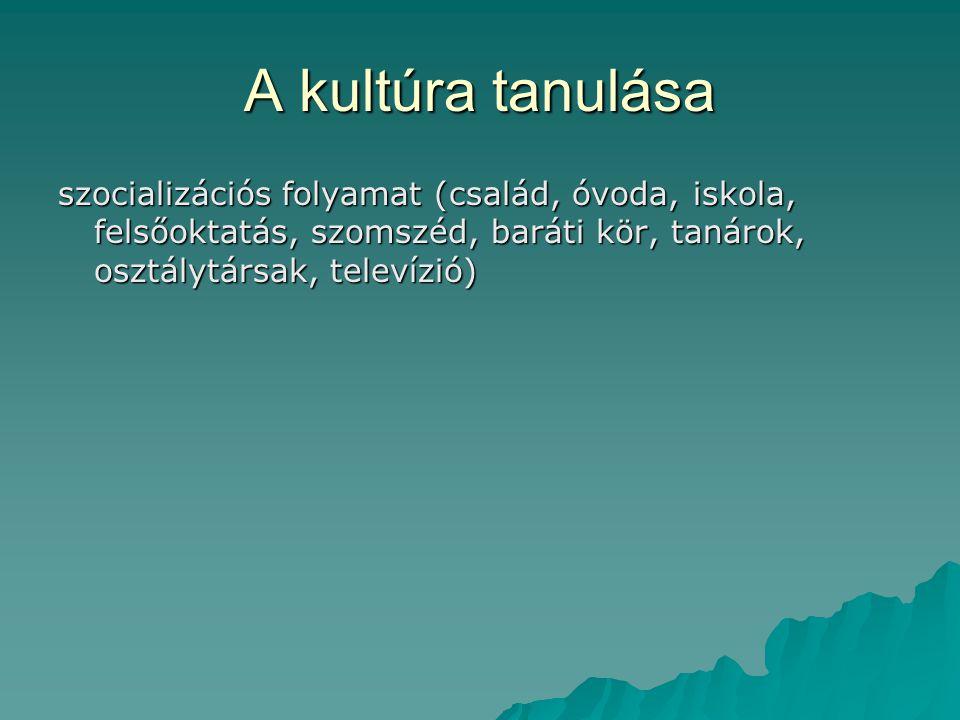 A kultúra tanulása szocializációs folyamat (család, óvoda, iskola, felsőoktatás, szomszéd, baráti kör, tanárok, osztálytársak, televízió)