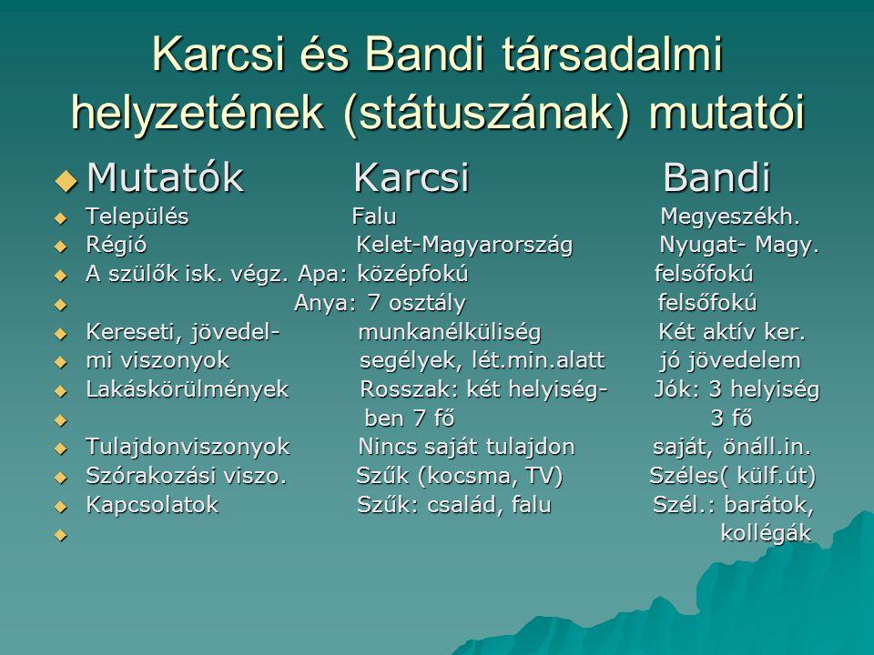 Karcsi és Bandi társadalmi helyzetének (státuszának) mutatói