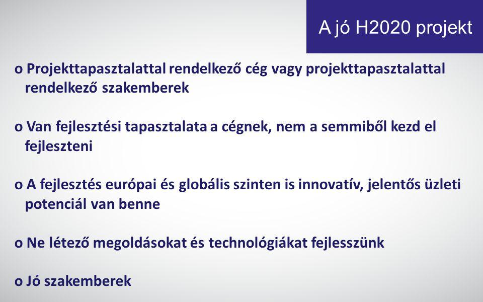 A jó H2020 projekt o Projekttapasztalattal rendelkező cég vagy projekttapasztalattal. rendelkező szakemberek.