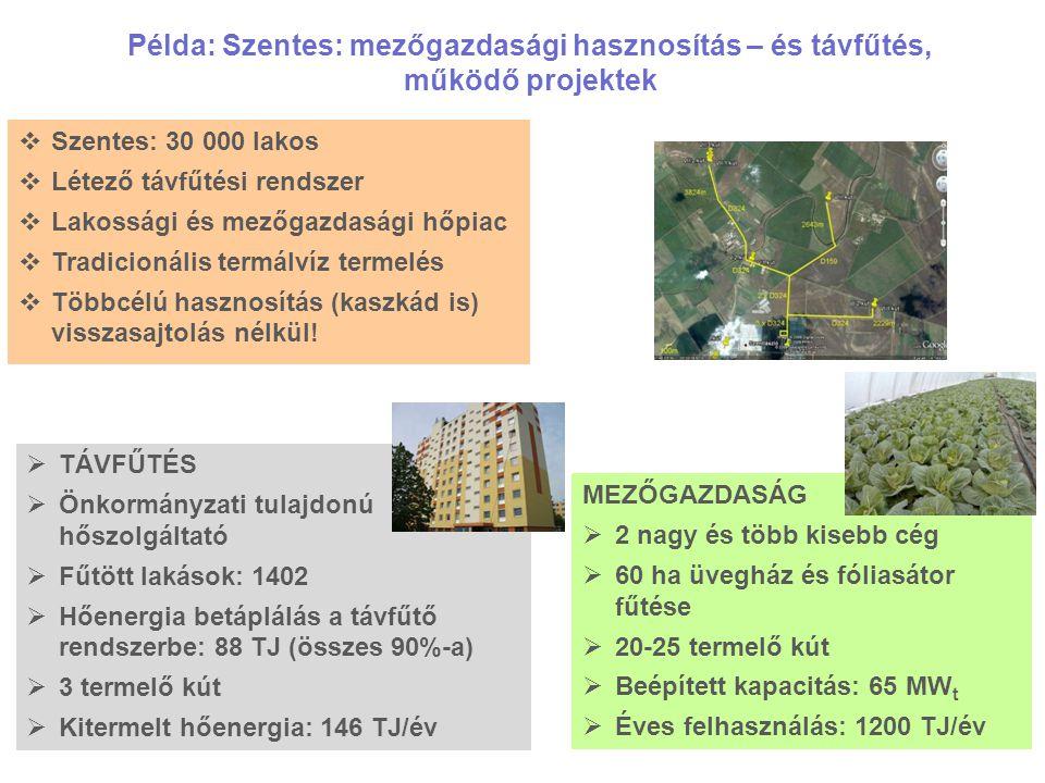 Példa: Szentes: mezőgazdasági hasznosítás – és távfűtés, működő projektek