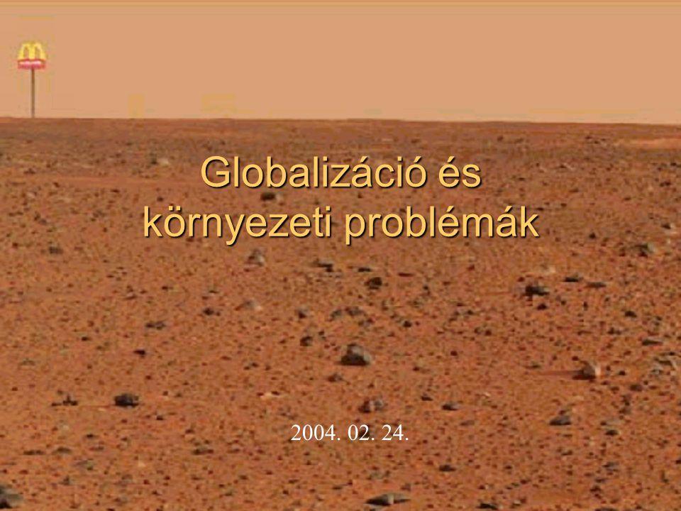 Globalizáció és környezeti problémák