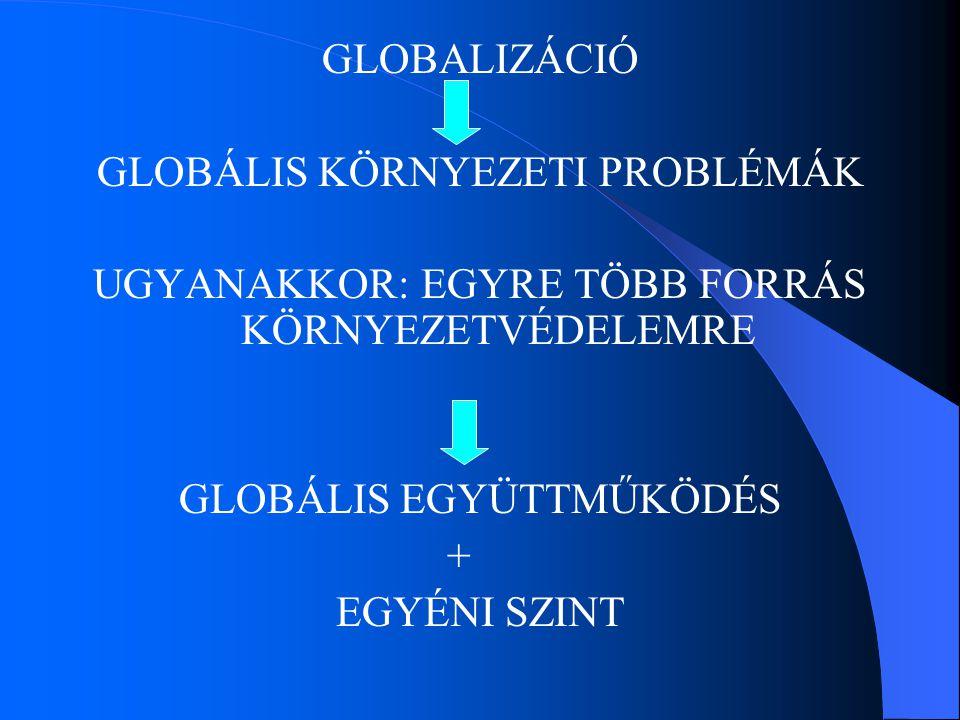 GLOBÁLIS KÖRNYEZETI PROBLÉMÁK