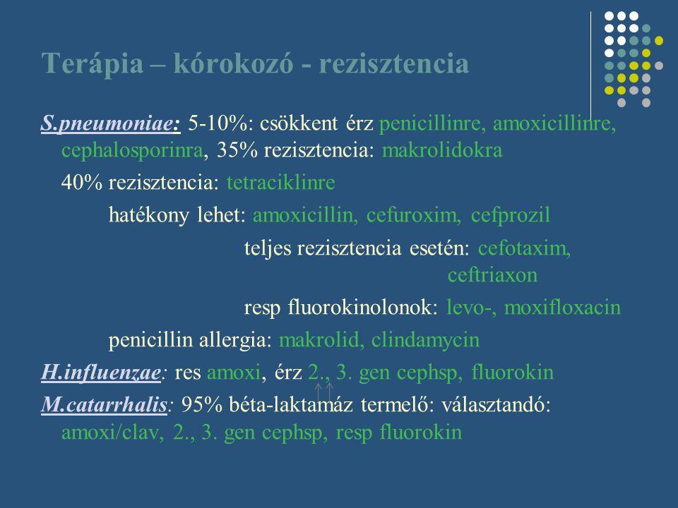 Terápia – kórokozó - rezisztencia