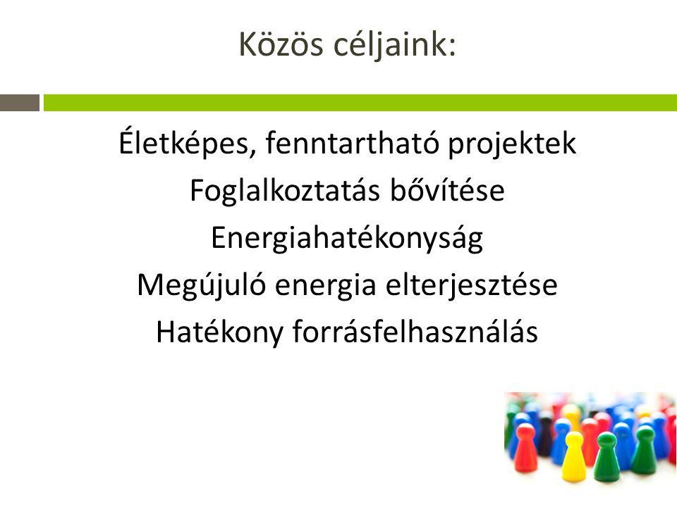 Közös céljaink: Életképes, fenntartható projektek
