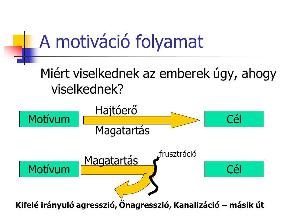 A motiváció folyamat Miért viselkednek az emberek úgy, ahogy viselkednek Hajtóerő. Motívum. Cél.