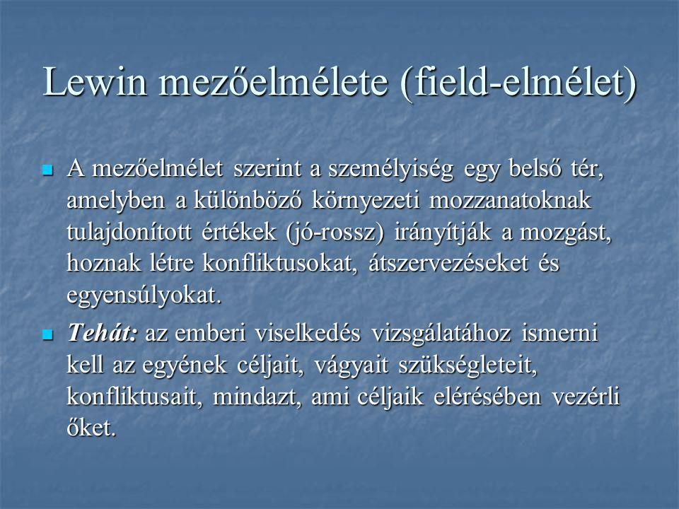 Lewin mezőelmélete (field-elmélet)