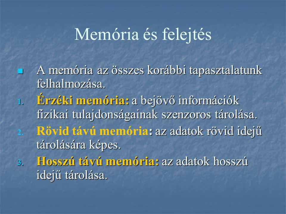 Memória és felejtés A memória az összes korábbi tapasztalatunk felhalmozása.