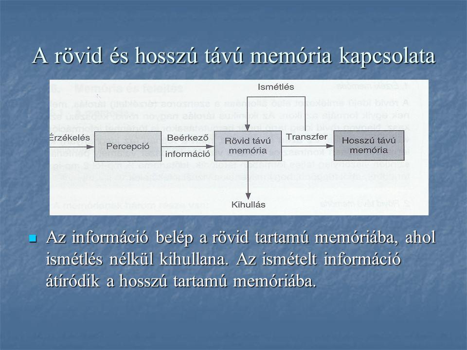 A rövid és hosszú távú memória kapcsolata