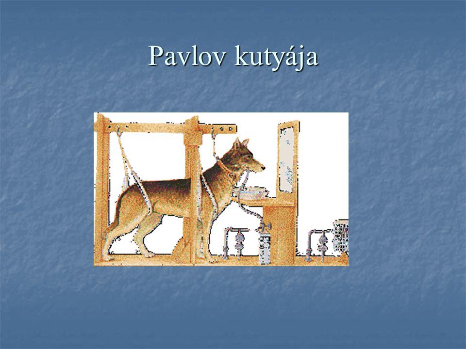 Pavlov kutyája