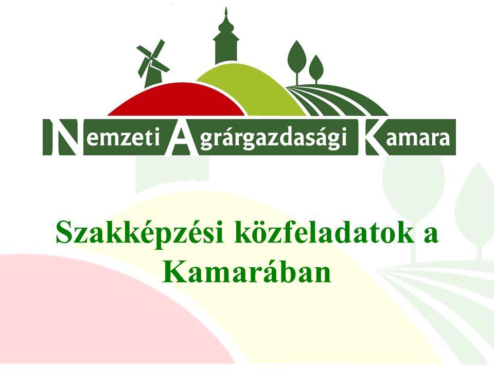 Szakképzési közfeladatok a Kamarában