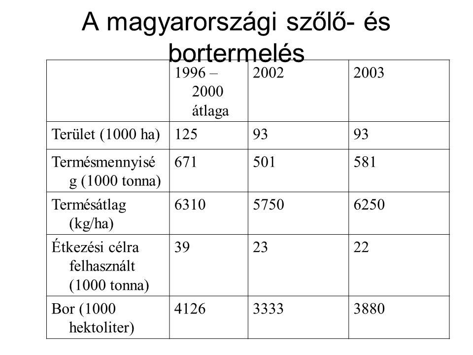 A magyarországi szőlő- és bortermelés
