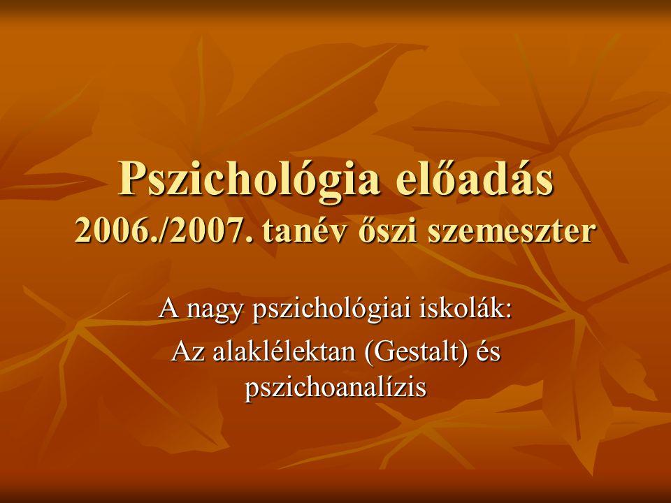 Pszichológia előadás 2006./2007. tanév őszi szemeszter