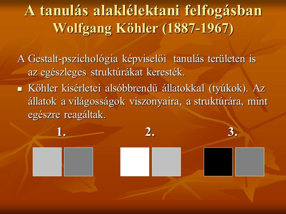 A tanulás alaklélektani felfogásban Wolfgang Köhler (1887-1967)