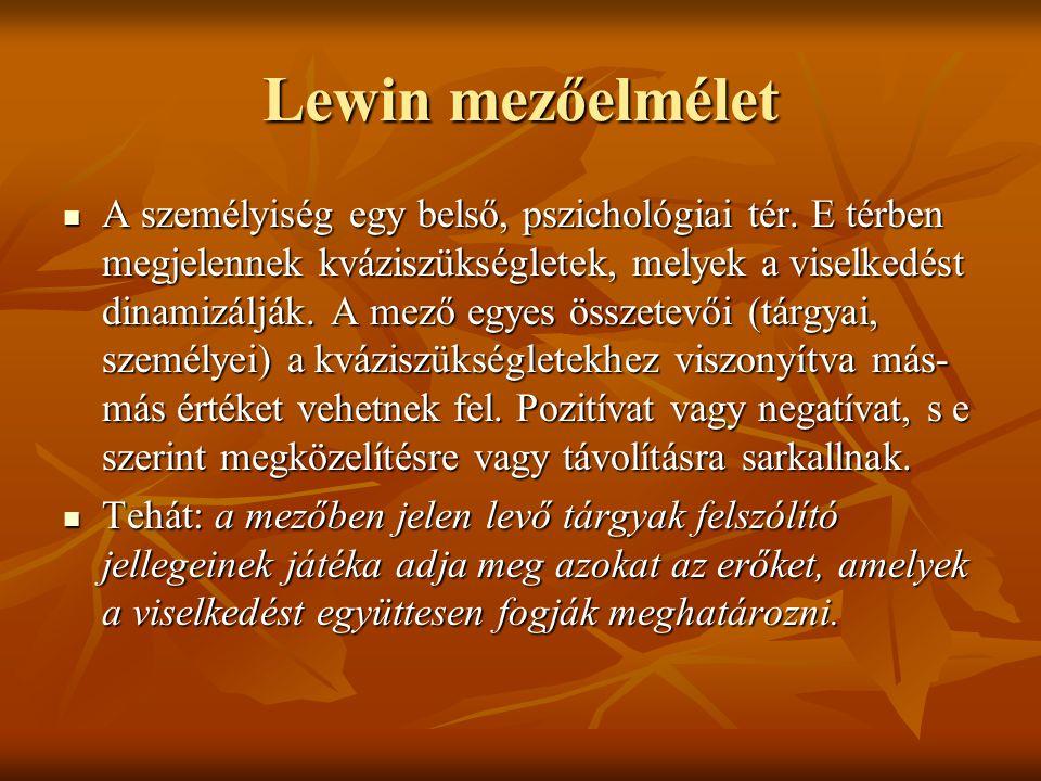 Lewin mezőelmélet