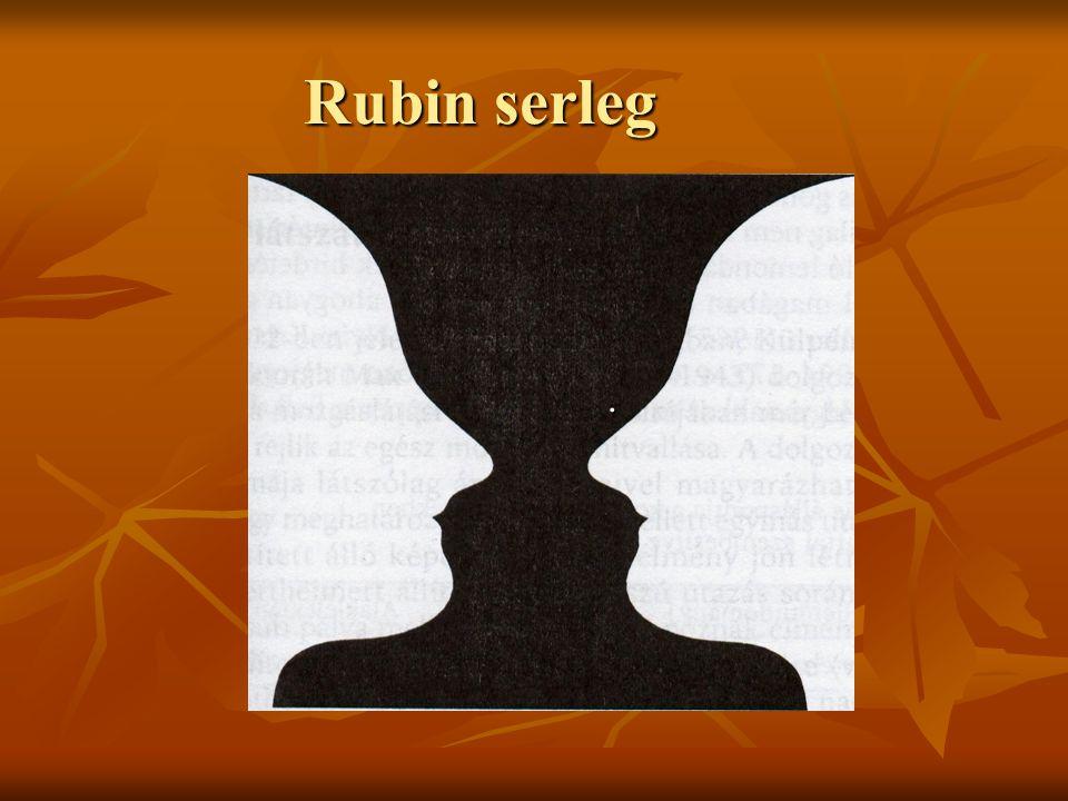Rubin serleg .