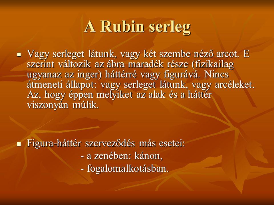 A Rubin serleg