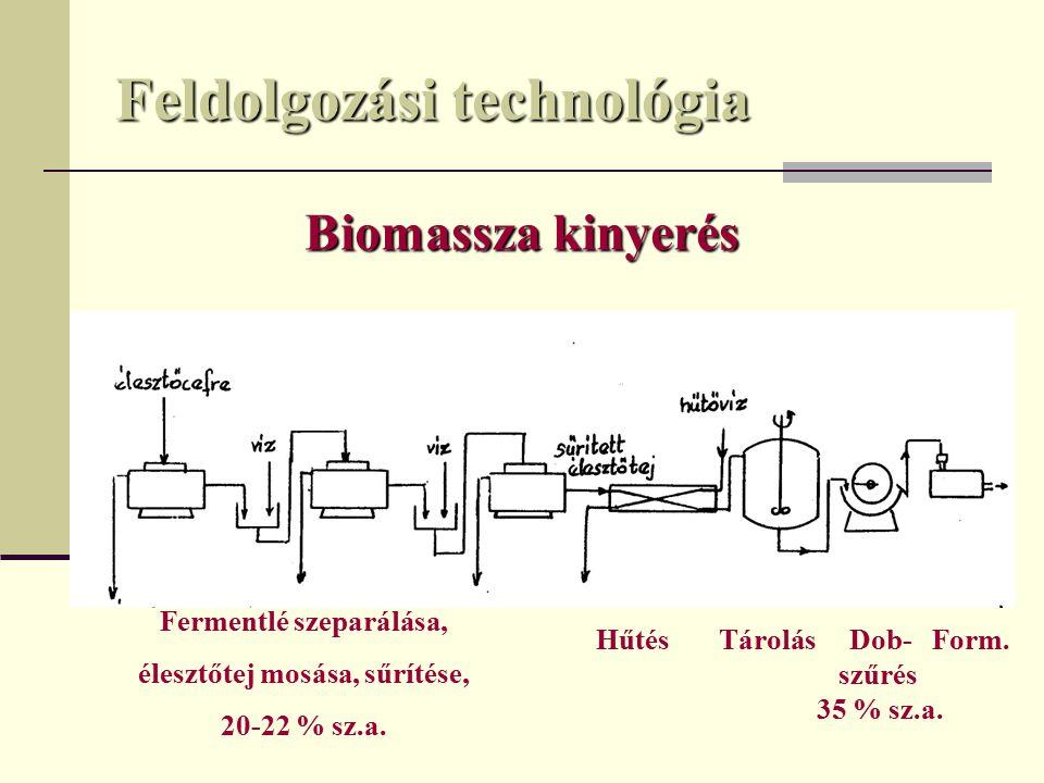 Feldolgozási technológia