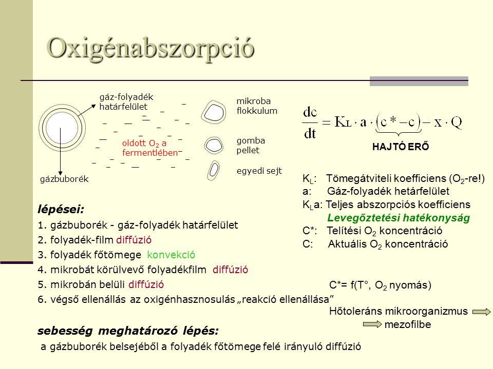 Oxigénabszorpció KL: Tömegátviteli koefficiens (O2-re!)