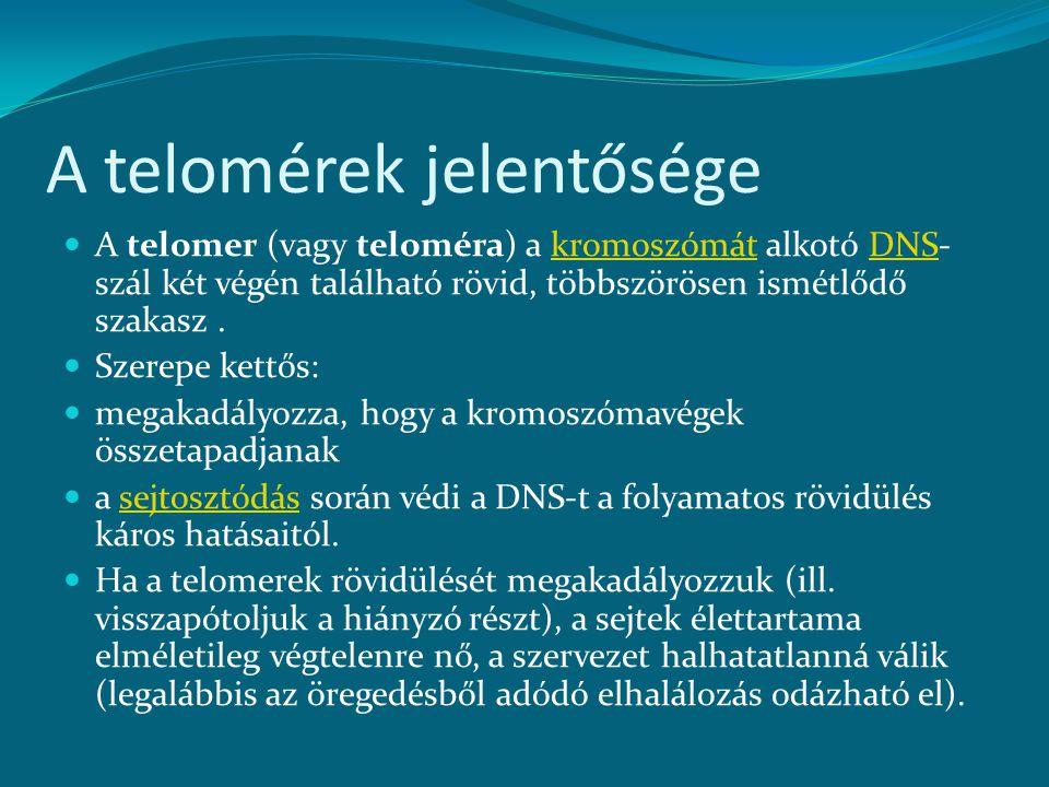 A telomérek jelentősége