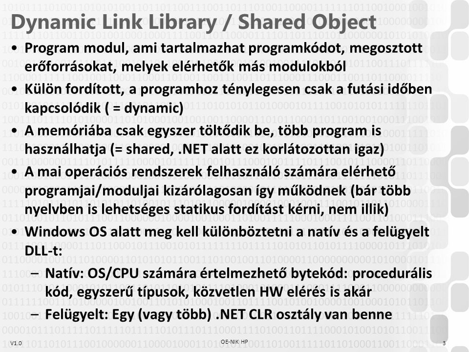 Dynamic Link Library / Shared Object