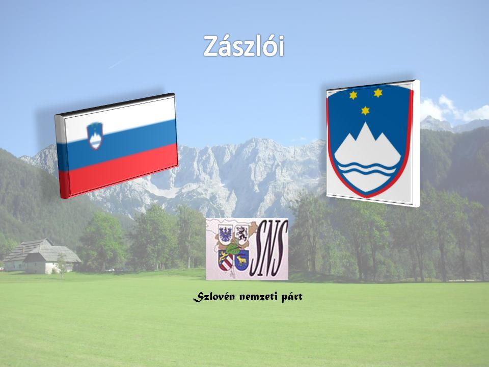 Zászlói Szlovén nemzeti párt