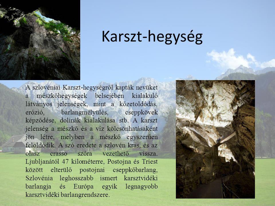 Karszt-hegység