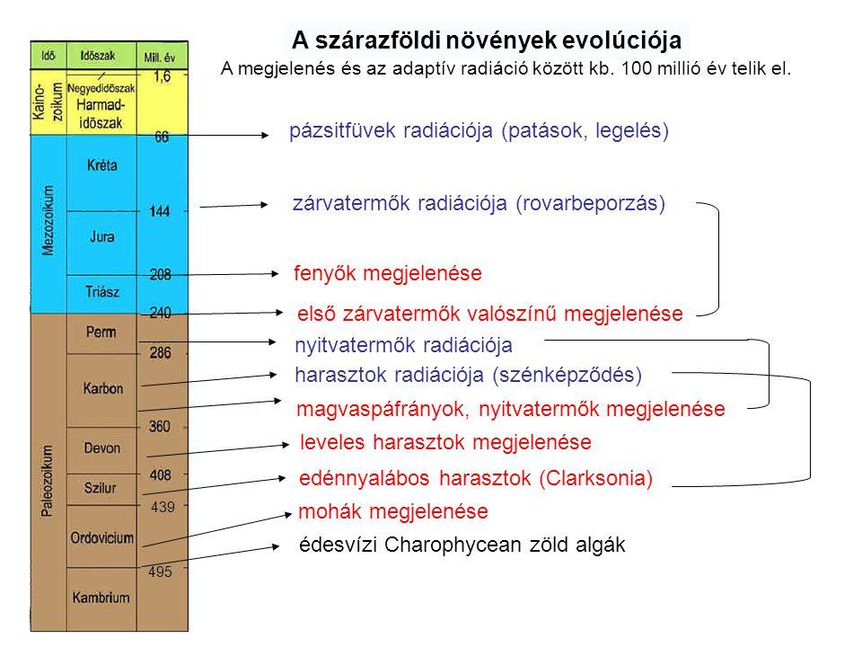 A szárazföldi növények evolúciója