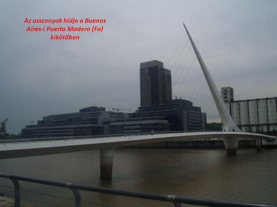 Az asszonyok hídja a Buenos Aires-i Puerto Madero (Fa) kikötőben