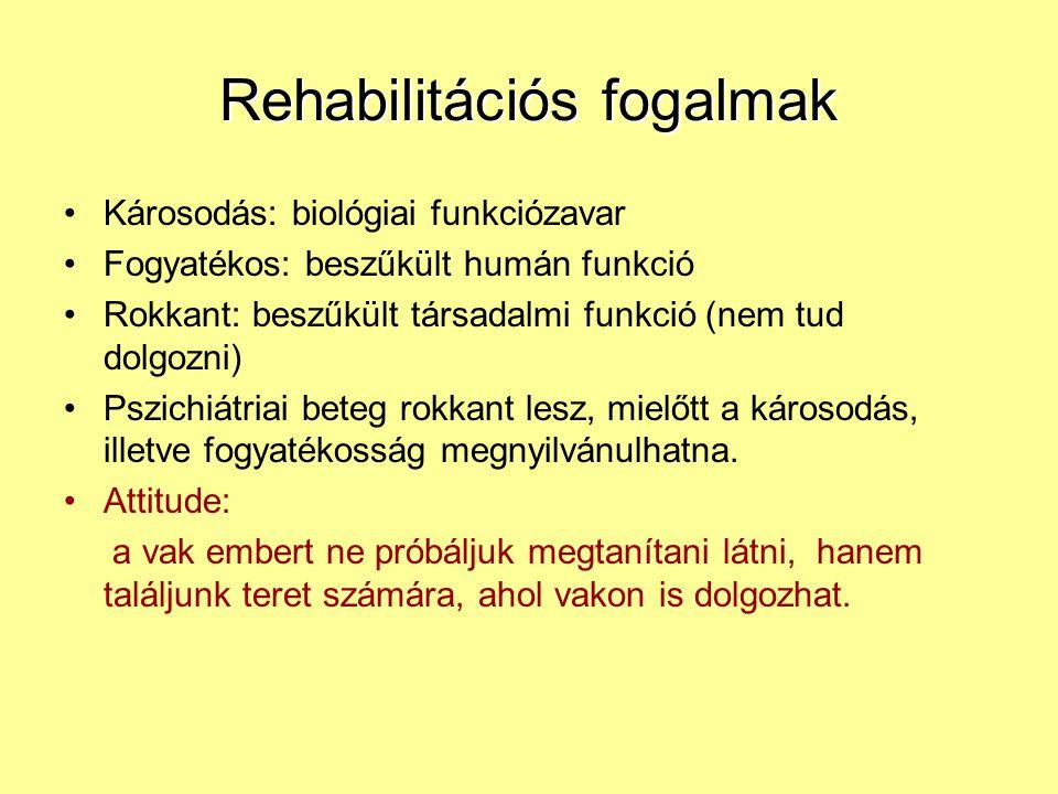 Rehabilitációs fogalmak