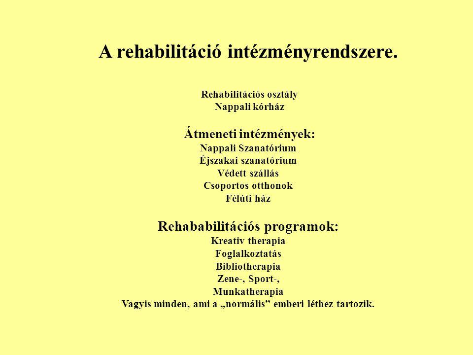 A rehabilitáció intézményrendszere.