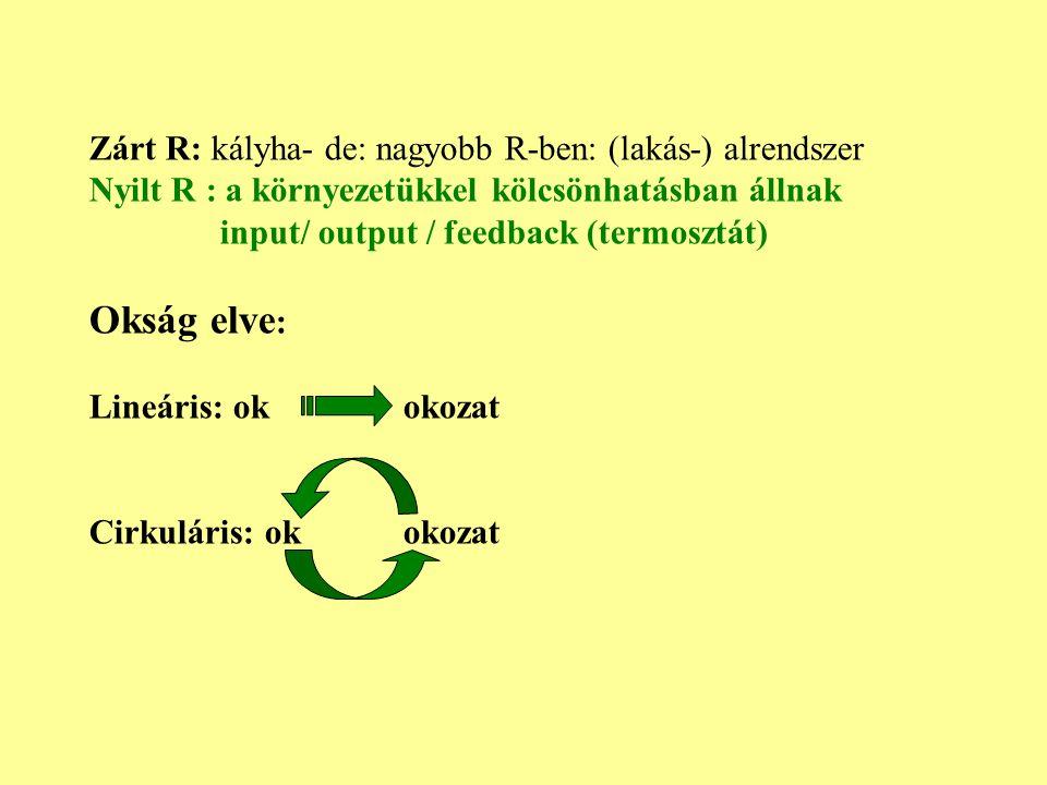 Okság elve: Zárt R: kályha- de: nagyobb R-ben: (lakás-) alrendszer