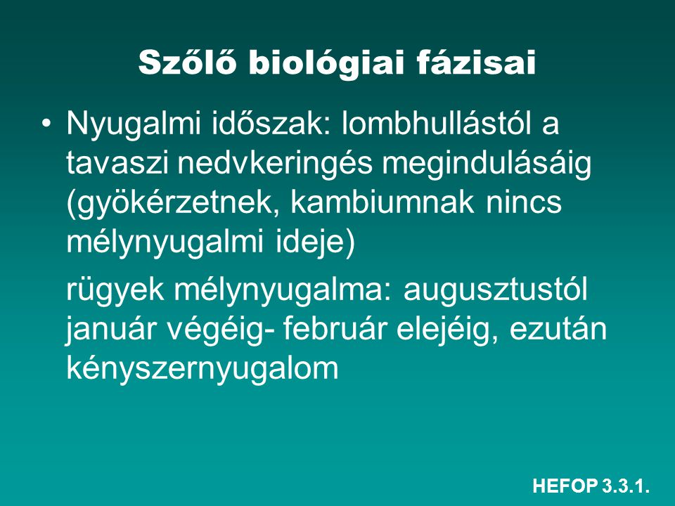 Szőlő biológiai fázisai