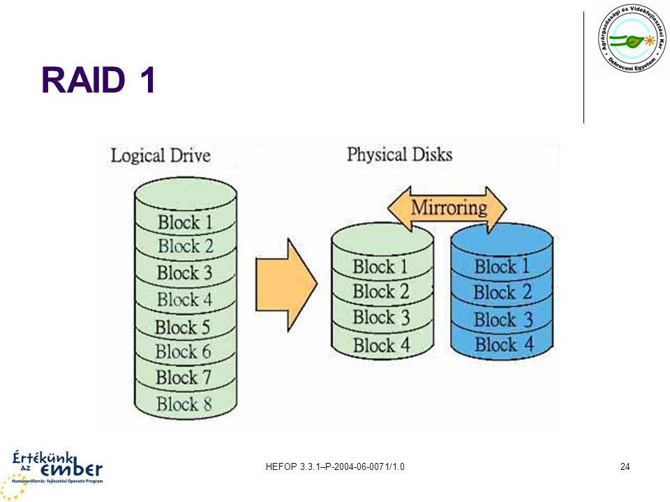 RAID 1 HEFOP 3.3.1–P-2004-06-0071/1.0