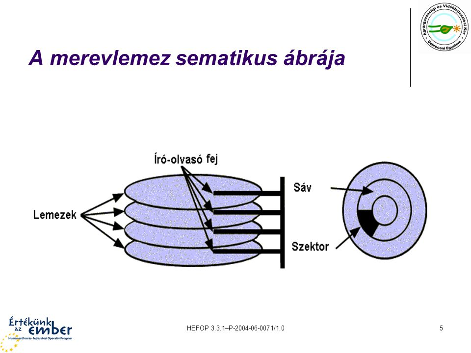 A merevlemez sematikus ábrája