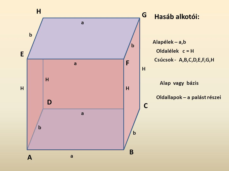 H G Hasáb alkotói: E F D C B A a b Alapélek – a, b b Oldalélek c = H