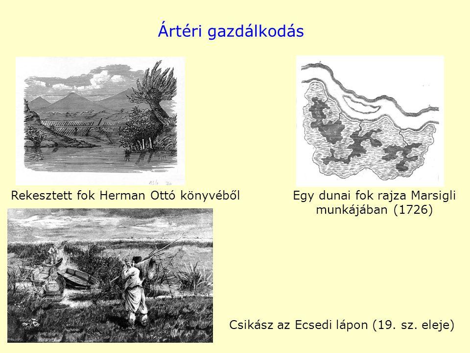 Ártéri gazdálkodás Rekesztett fok Herman Ottó könyvéből