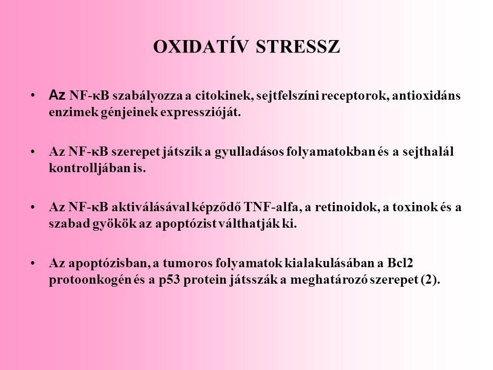 OXIDATÍV STRESSZ Az NF-κB szabályozza a citokinek, sejtfelszíni receptorok, antioxidáns enzimek génjeinek expresszióját.