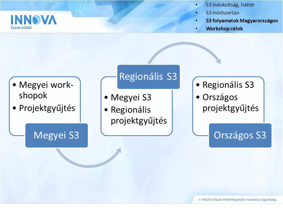 Megyei S3 Regionális S3 Országos S3 Megyei work-shopok Projektgyűjtés