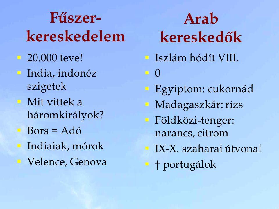 Fűszer-kereskedelem Arab kereskedők