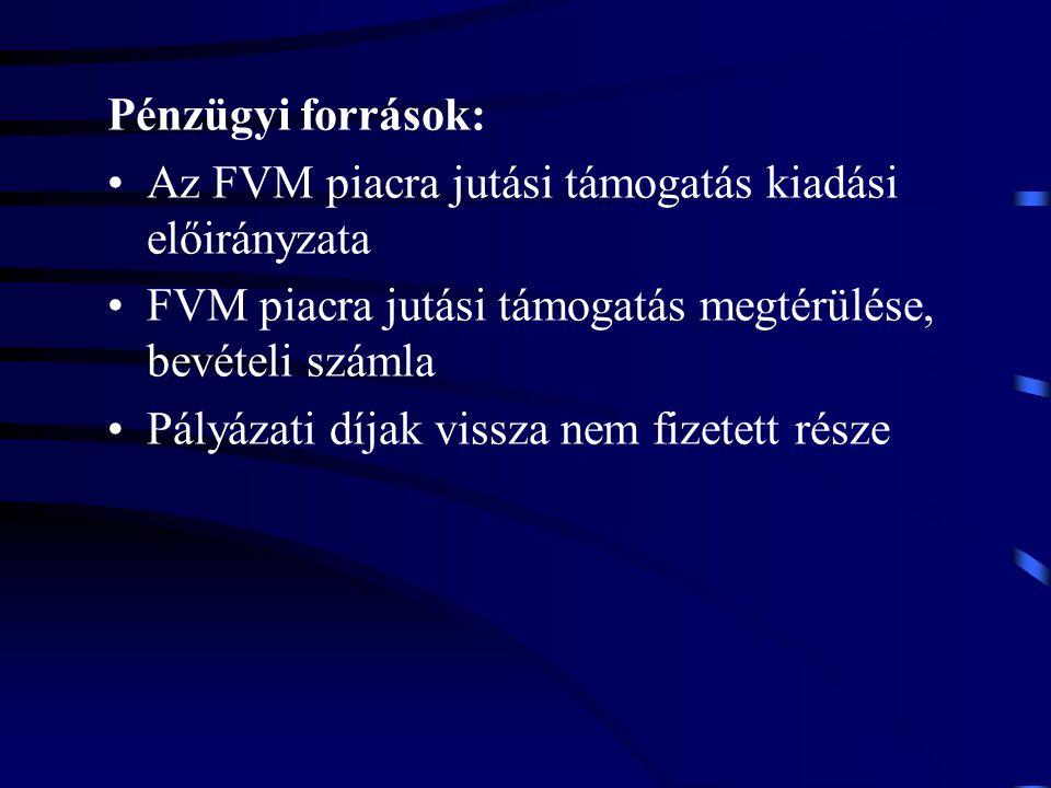 Pénzügyi források: Az FVM piacra jutási támogatás kiadási előirányzata. FVM piacra jutási támogatás megtérülése, bevételi számla.
