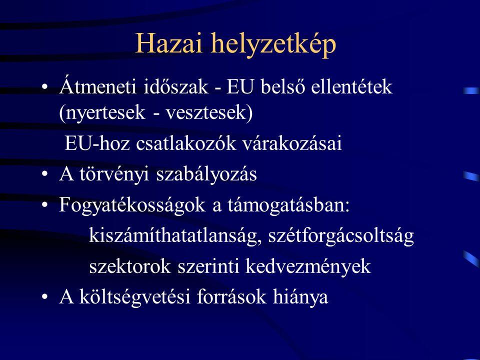 Hazai helyzetkép Átmeneti időszak - EU belső ellentétek (nyertesek - vesztesek) EU-hoz csatlakozók várakozásai.