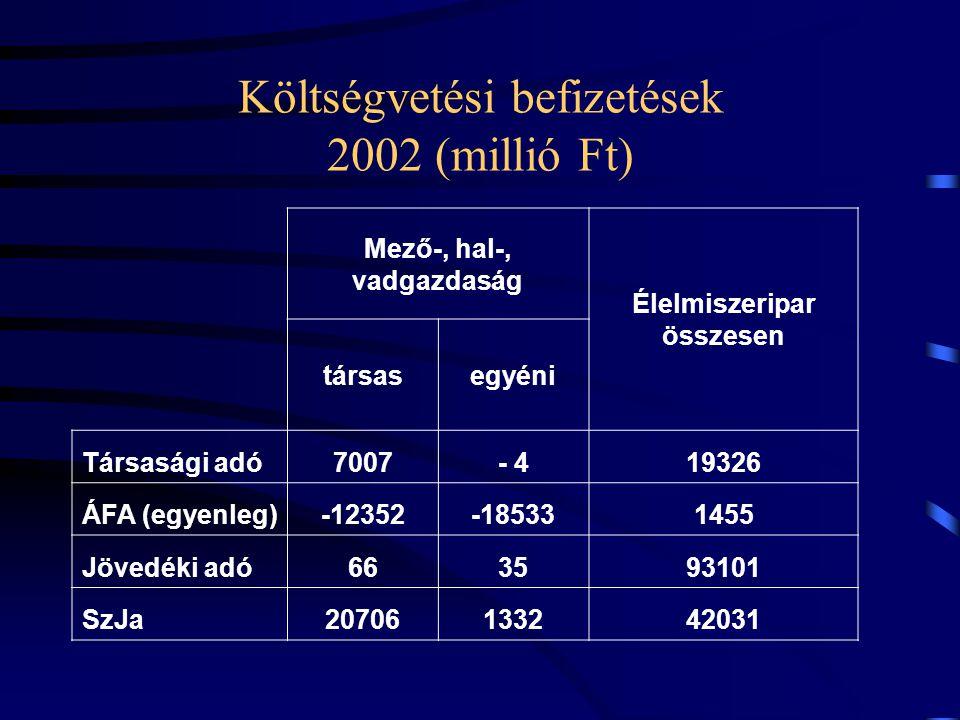 Költségvetési befizetések 2002 (millió Ft)