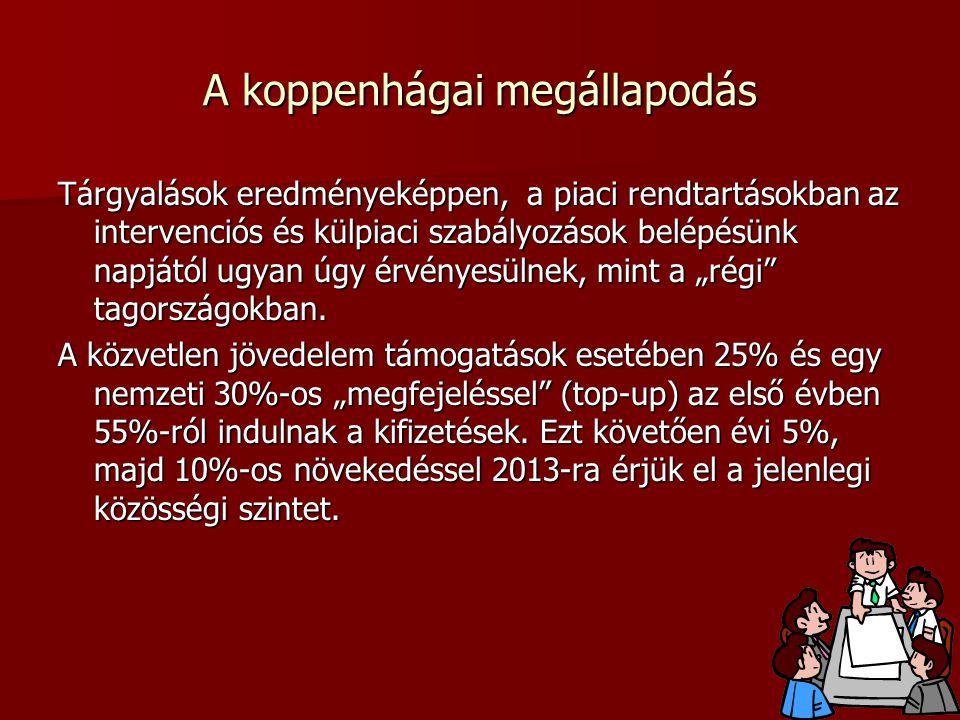 A koppenhágai megállapodás
