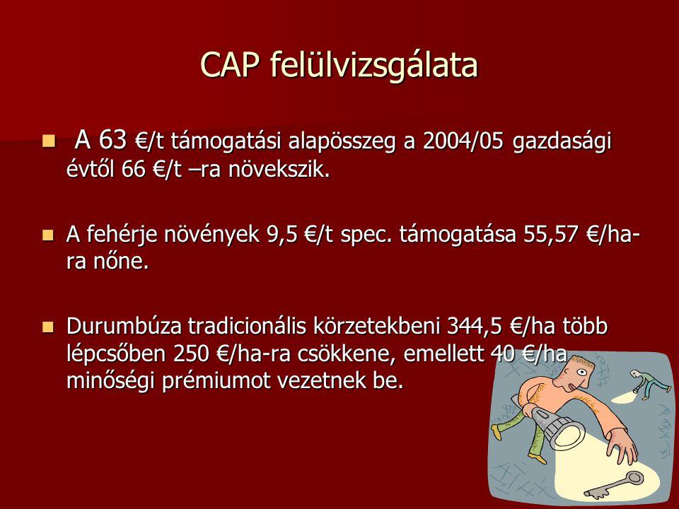 CAP felülvizsgálata A 63 €/t támogatási alapösszeg a 2004/05 gazdasági évtől 66 €/t –ra növekszik.
