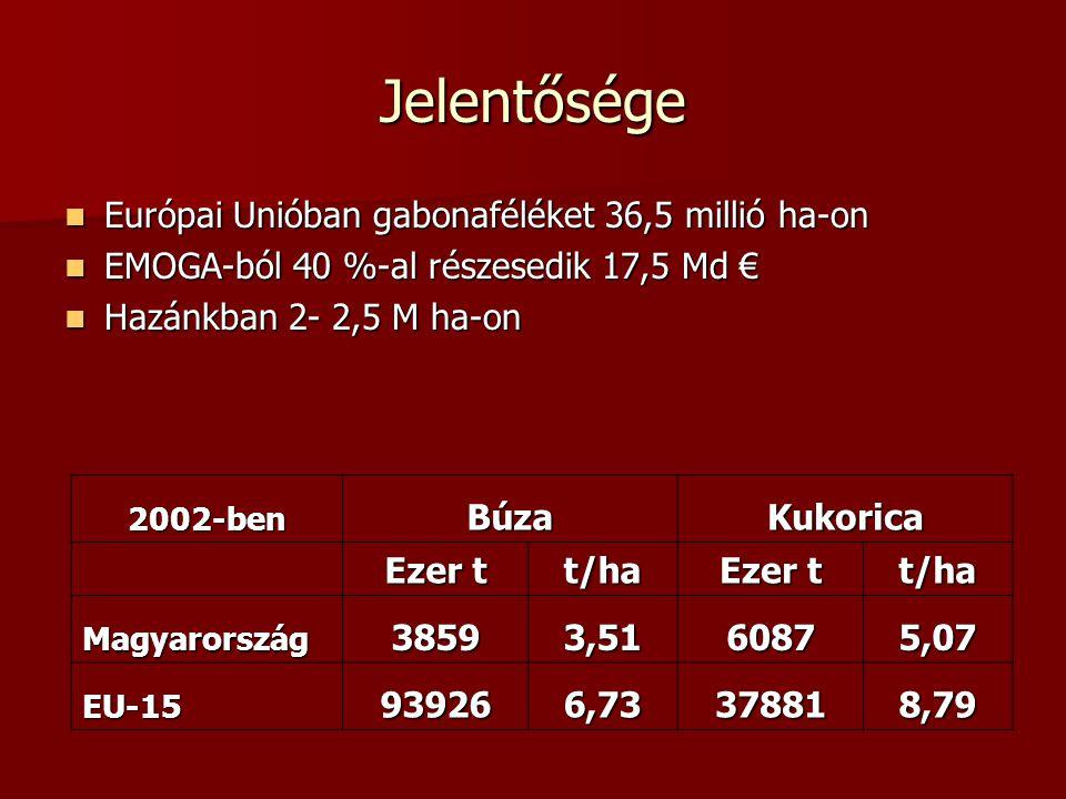 Jelentősége Európai Unióban gabonaféléket 36,5 millió ha-on