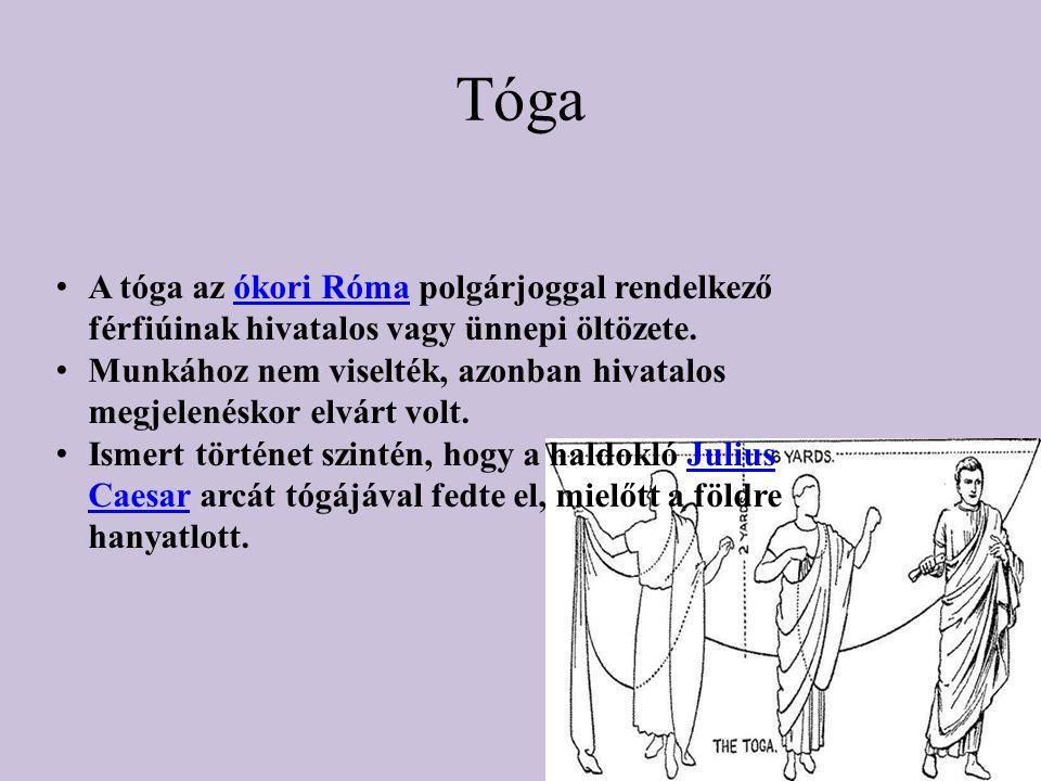Tóga A tóga az ókori Róma polgárjoggal rendelkező férfiúinak hivatalos vagy ünnepi öltözete.