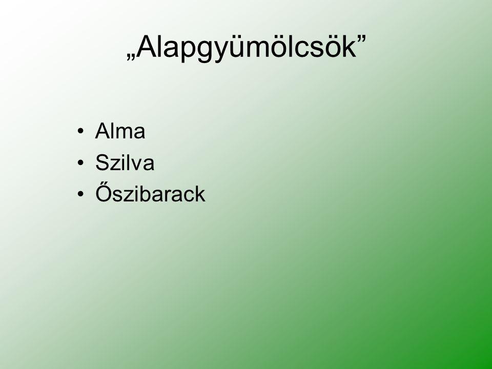 """""""Alapgyümölcsök Alma Szilva Őszibarack"""