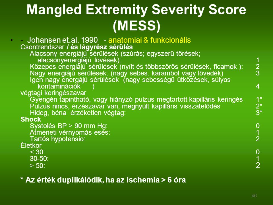 Mangled Extremity Severity Score (MESS)