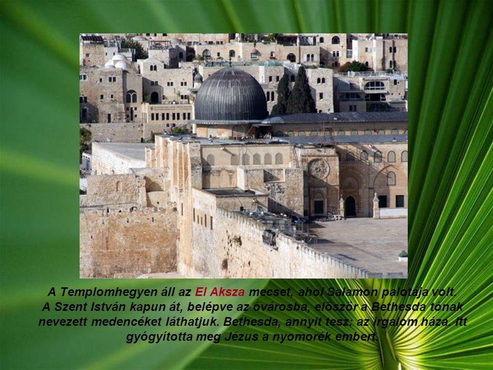 A Templomhegyen áll az El Aksza mecset, ahol Salamon palotája volt